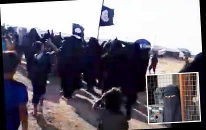 ISIS' jihadi brides raise group's black flag over refugee camp in chilling sign fanatics are rising from the ashes – The Sun