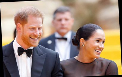 Meghan Markle and Prince Harry wanted to be 'international roving royals from the outset', claims royal expert – The Sun