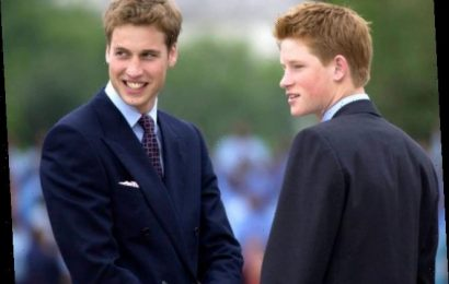 Prince Harry and Prince William's Relationship in Photos