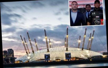 Anthony Joshua looking to fight Kubrat Pulev in September with just 4,000 fans with Royal Albert Hall and O2 tipped – The Sun