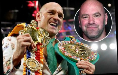 Tyson Fury confirms talks with Dana White over shock UFC switch but not until after WBC champ has finished boxing career – The Sun