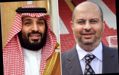 Newcastle fans in meltdown over mysterious documents about change in Prince Abdullah Al Saud's role at Sheff Utd – The Sun
