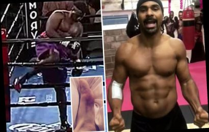 The most shocking and bizarre reasons boxers have been forced to pull out of fights including Parker's spider bite – The Sun