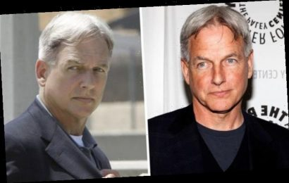 NCIS cast: Why did the show's creator not want Mark Harmon to play Gibbs?