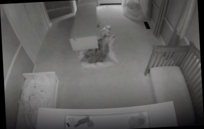 Horrifying baby-cam video shows IKEA bookcase toppling onto toddler twins