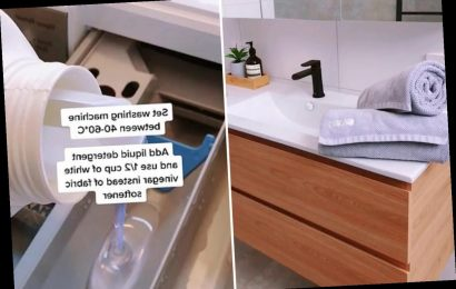 Mum shows how to stop towels going stiff and scratchy when you wash them – and all you need is vinegar