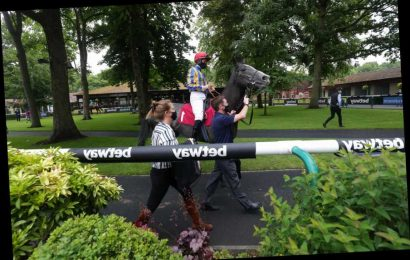 Haydock Tips: Racecard, analysis and betting preview for the feature Coultree Handicap today