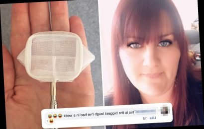 Mum nabs bargain net to clean her paddling pool on eBay… then is mortified when it's absolutely titchy