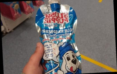 B&M is selling Slush Puppies for 89p and shoppers are saying they are perfect for cocktails