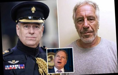 Epstein prosecutor Geoffrey Berman fired 'because he refused to drop Prince Andrew probe,' victims' lawyer claims