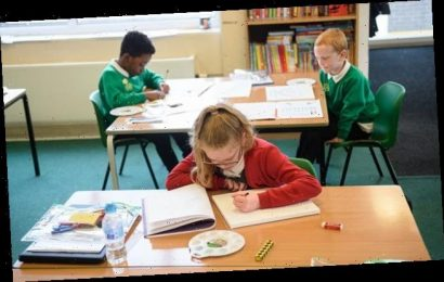 Schools WILL reopen in two months 'come what may'
