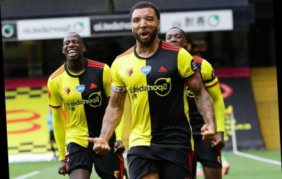 Watford 2 Newcastle 1: Pearson's survival payday moves step closer after Deeney double gives Hornets breathing space