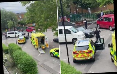 Young man shot dead next to children's playground in broad daylight in North London