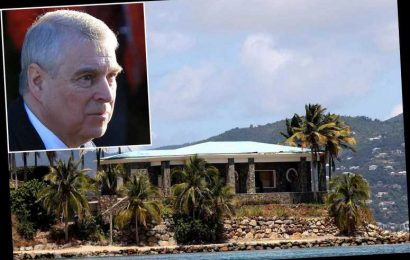 Masseuse on Jeffrey Epstein's 'Pedophile Island' recalls session with 'chatty' Prince Andrew