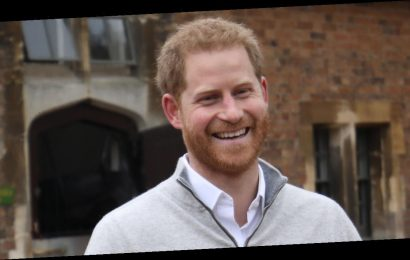 Prince Harry Shares Rare Glimpse at Los Angeles Residence in New Video