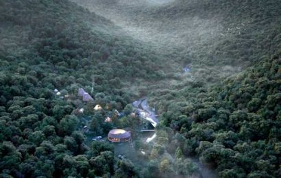 A new luxury campground filled with circles sits in a Japanese forest, is inspired by the coziness of hygge, and looks like a real-life FernGully. Take a look inside.