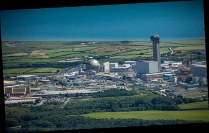 Bomb disposal team are called to Sellafield nuclear site