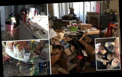 Photos show inside Ron Jeremy's filthy, cockroach-infested apartment
