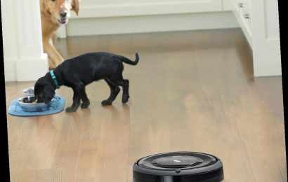 Long Hair, Don't Care: Pet & Human Hair Won't Tangle These Genius Robot Vacuums