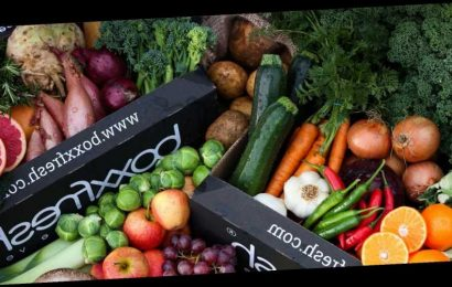 Make sure you're getting your five-a-day with top fruit and veg box deliveries