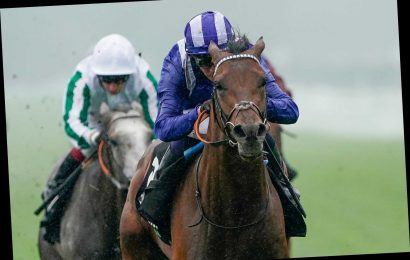 Hukum gallops into the St Leger picture with decisive victory in the Geoffrey Freer Stakes at Newbury
