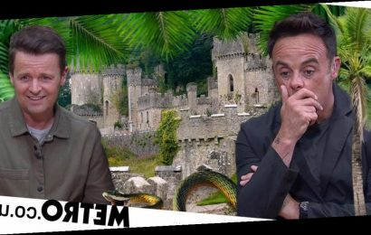 I'm A Celeb bosses almost missed out on castle as owner thought offer was spam