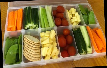 Mum claims a tool kit is the secret to keeping her kids' snacks organised in the fridge for days & others love her idea