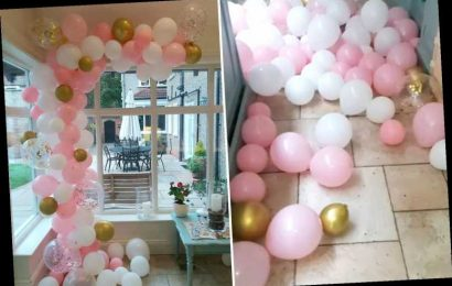 Thrifty woman creates stunning balloon display for baby shower for just £12.99 and people are loving it – The Sun