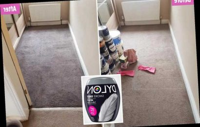Savvy woman dyes her carpet a stylish grey in just ONE HOUR using £1 dye