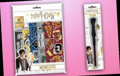 Parents are raving about Wilko's Harry Potter range which starts at 50p and has everything from bedding to crockery