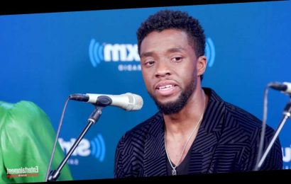 Chadwick Boseman Tearfully Spoke About Black Panther's Impact on 2 Boys with Terminal Cancer