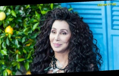 Cher attemps to volunteer at post office but is turned down: 'Is no one going to help me?'