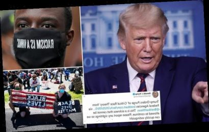 Trump moves to cancel 'anti-American' racial sensitivity training