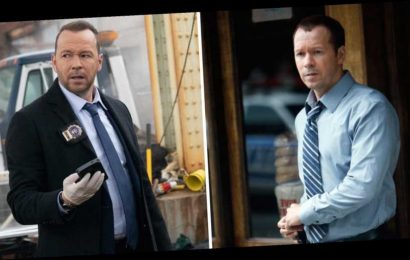 10 Years Ago! 'Blue Bloods' Cast From Season 1 to Now