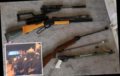Loaded shotgun, rifle and CS gas among terrifying arsenal of weapons seized by armed cops in traveller camp raid