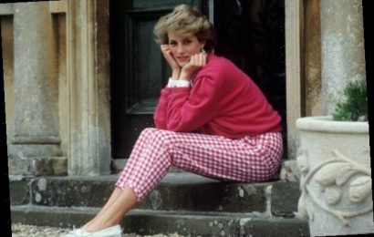 The Heartbreaking Reason Princess Diana Would Wait on Her Doorstep Revealed by Charles Spencer