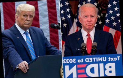 Trump and Biden prep for debate with fake rivals