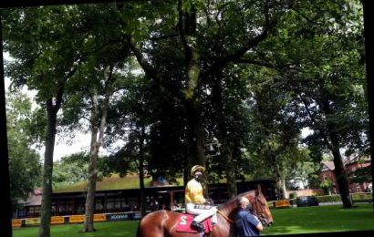 Haydock Races: Betting Preview, racecard and tips for Saturday's Betfair Sprint Cup