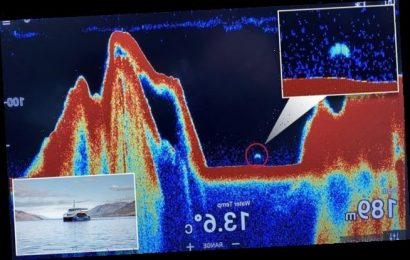 Could this really be Nessie? Sonar detects mystery 30ft long shape