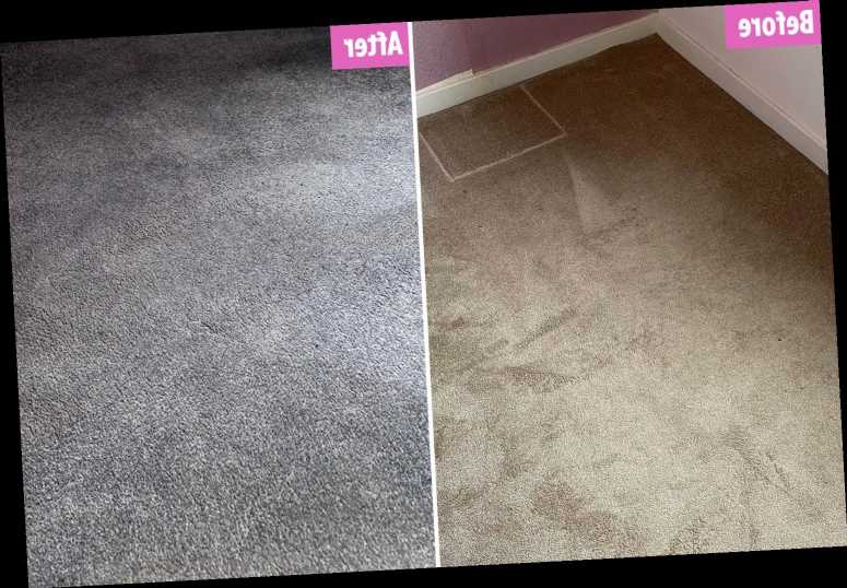 DIY fan who couldn't afford a new carpet dyes shabby beige floor grey with £5 The Range buy and it was super quick – The Sun