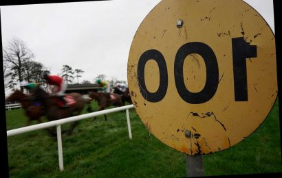 Gowran Races: Big gamble taking place in Ireland as Ronan McNally's Cash D'alex punted from 14-1 into 11-4 favourite