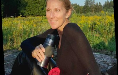 Céline Dion Shares Rare Pared-Down Look in Glowing Barefaced Photo