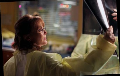 'ER': Laura Innes Is 1 of 2 Cast Members That Were on the Show the Longest