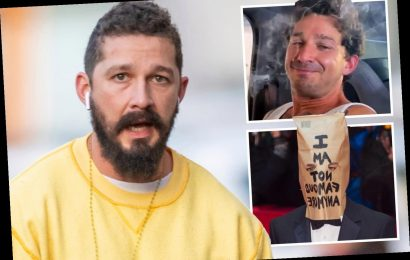 Shia LaBeouf 'charged with battery and petty theft' after stealing a man's hat following 'physical altercation' in LA