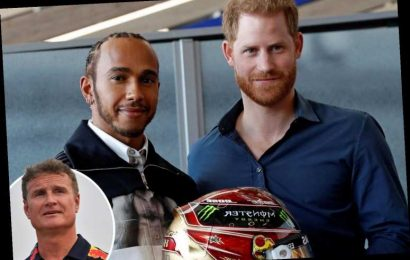 F1 legend David Coulthard 'doesn't understand' why Lewis Hamilton hasn't been knighted and says 'has he done something?'