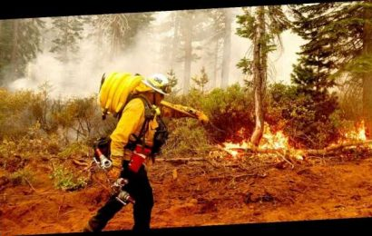 Washington state family loses home to wildfire – then all 7 test positive for coronavirus