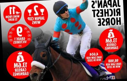 Record-breaking Almond Eye retires as highest-earning Japanese horse ever after winning almost £1million per RACE