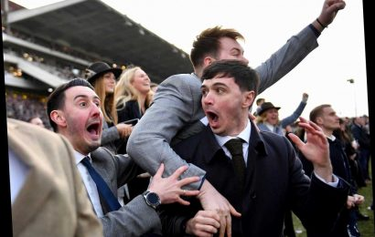 Cheltenham Races: Five stars who can win you some cash at Cheltenham's November Meeting this weekend – odds and tips