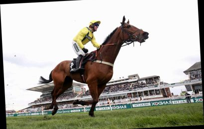 Betfair Chase: Get incredible enhanced 50/1 price on Lostintranslation for Haydock Park with Betway