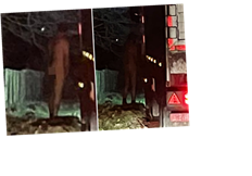 Trucker pictured naked and appearing to 'pleasure himself' at side of busy road